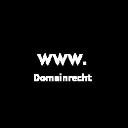 Domainrecht und Domainberatung